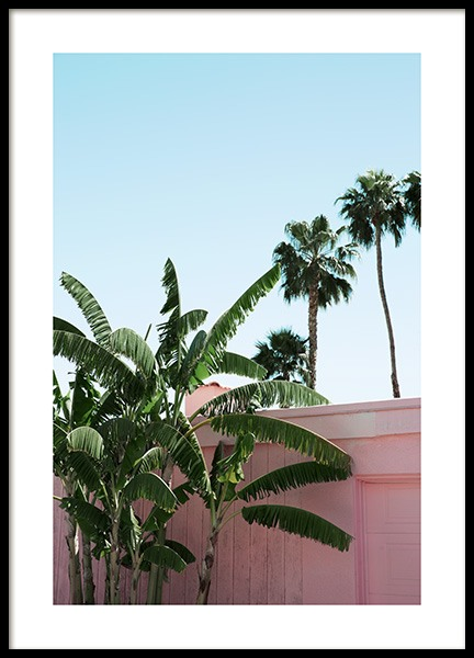 Pink Banana Leaves Plakat i gruppen Studio Collections / Studio Coast to Coast / Palm Springs hos Desenio AB (10791)