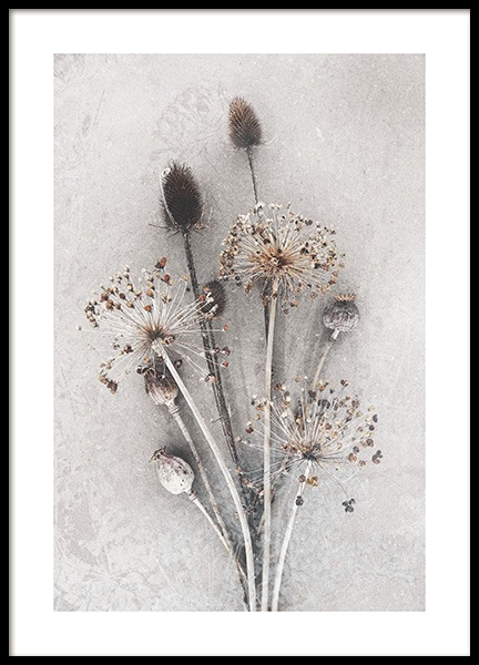 Dried Bunch of Flowers Plakat i gruppen Plakater / Fotokunst hos Desenio AB (12666)