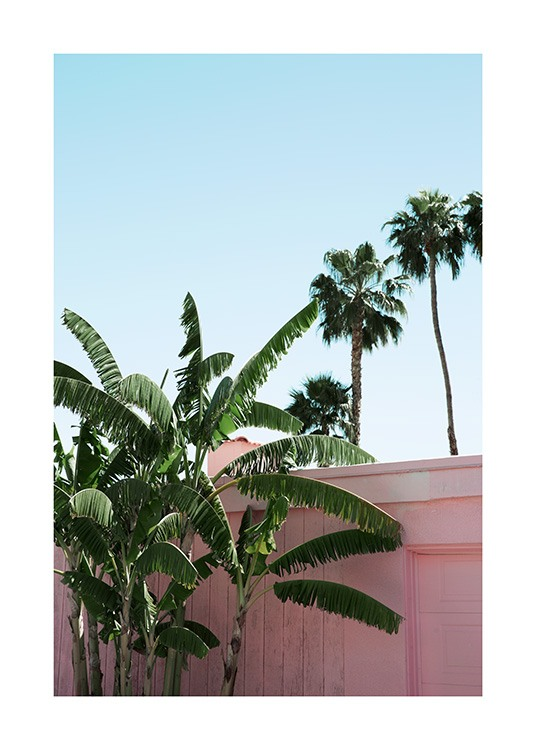 Pink Banana Leaves Plakat / Planteposters hos Desenio AB (10791)