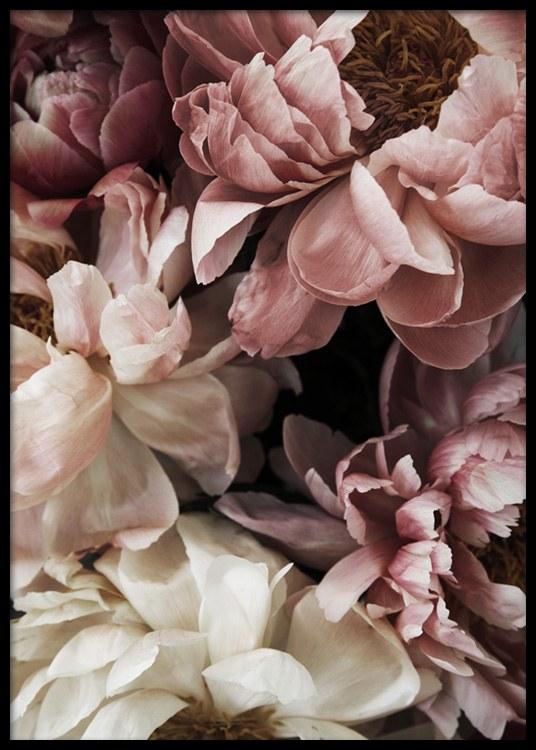 Flower Wall Plakat