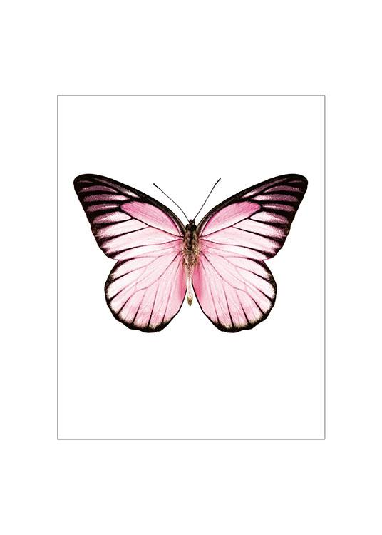 Pink Butterfly Small Plakat  / Insekter & dyr hos Desenio AB (7431)